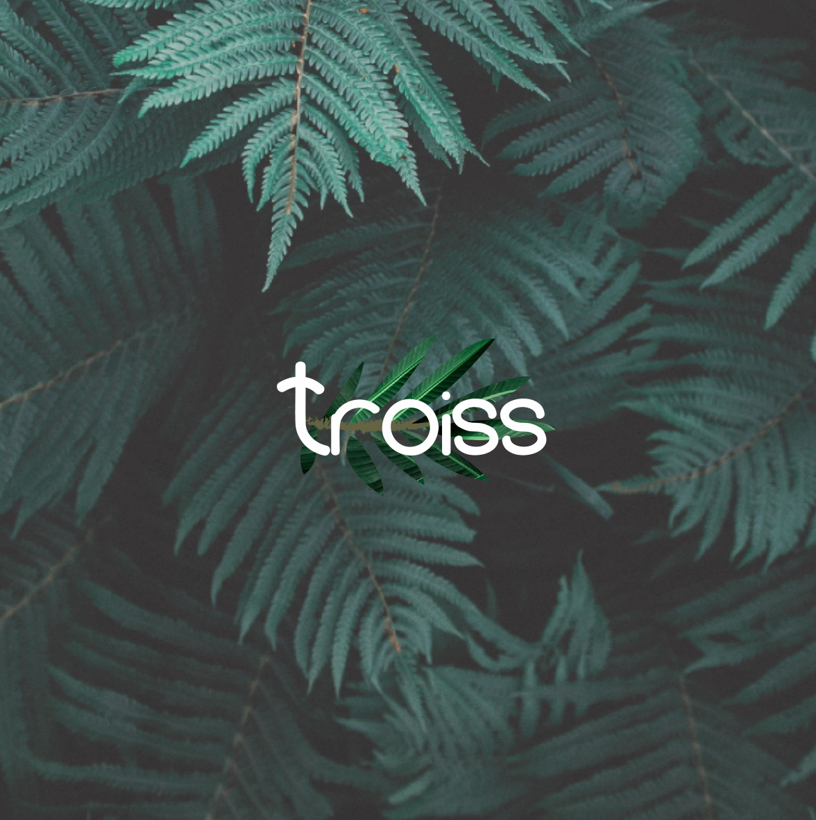 Troiss Save the Planet